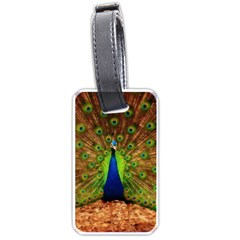 3d Peacock Bird Luggage Tags (two Sides)
