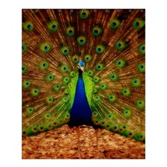 3d Peacock Bird Shower Curtain 60  X 72  (medium)