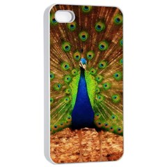 3d Peacock Bird Apple iPhone 4/4s Seamless Case (White)