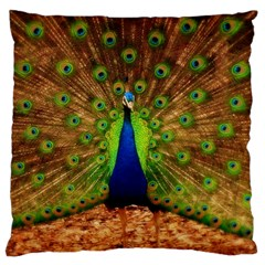 3d Peacock Bird Large Cushion Case (one Side)