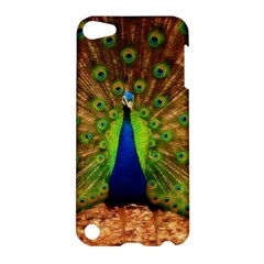 3d Peacock Bird Apple iPod Touch 5 Hardshell Case
