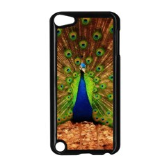 3d Peacock Bird Apple Ipod Touch 5 Case (black)
