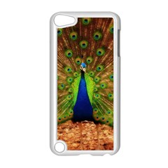 3d Peacock Bird Apple Ipod Touch 5 Case (white)