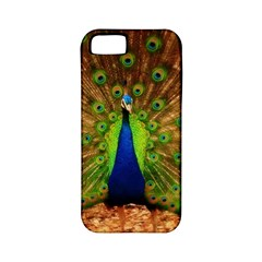 3d Peacock Bird Apple Iphone 5 Classic Hardshell Case (pc+silicone)
