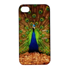 3d Peacock Bird Apple Iphone 4/4s Hardshell Case With Stand