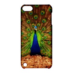 3d Peacock Bird Apple Ipod Touch 5 Hardshell Case With Stand