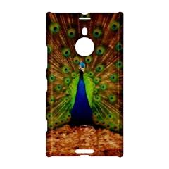 3d Peacock Bird Nokia Lumia 1520