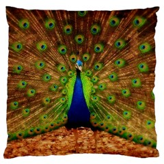 3d Peacock Bird Large Flano Cushion Case (one Side)