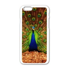3d Peacock Bird Apple iPhone 6/6S White Enamel Case