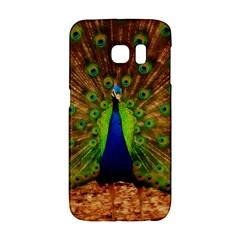 3d Peacock Bird Galaxy S6 Edge
