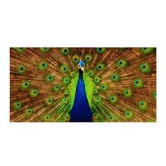 3d Peacock Bird Satin Wrap