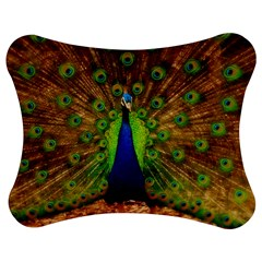 3d Peacock Bird Jigsaw Puzzle Photo Stand (Bow)