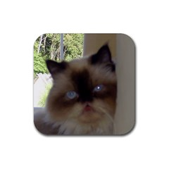 Seal Point Himalayan Rubber Square Coaster (4 pack)