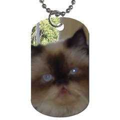 Seal Point Himalayan Dog Tag (Two Sides)