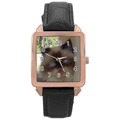 Seal Point Himalayan Rose Gold Leather Watch