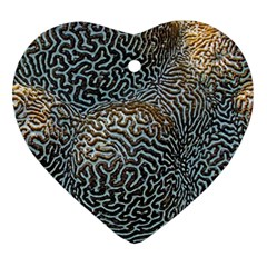 Coral Pattern Ornament (heart)