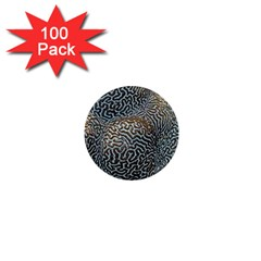 Coral Pattern 1  Mini Magnets (100 pack)