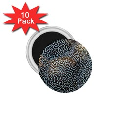 Coral Pattern 1 75  Magnets (10 Pack)