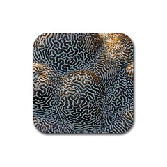 Coral Pattern Rubber Square Coaster (4 Pack)