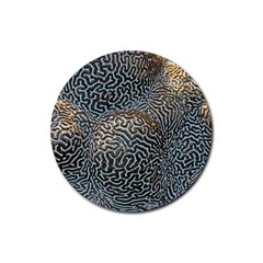 Coral Pattern Rubber Round Coaster (4 Pack)