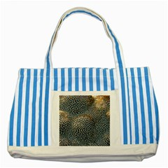 Coral Pattern Striped Blue Tote Bag