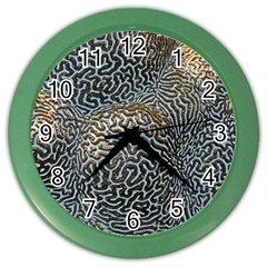 Coral Pattern Color Wall Clocks