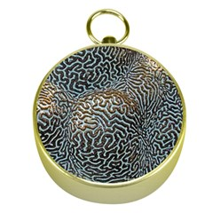 Coral Pattern Gold Compasses