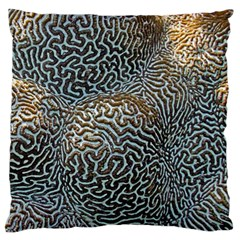 Coral Pattern Standard Flano Cushion Case (one Side)