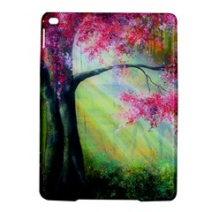 Forests Stunning Glimmer Paintings Sunlight Blooms Plants Love Seasons Traditional Art Flowers Sunsh Ipad Air 2 Hardshell Cases