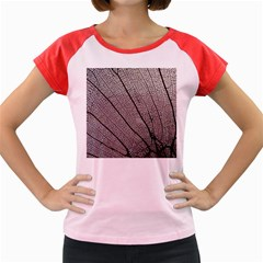 Sea Fan Coral Intricate Patterns Women s Cap Sleeve T-Shirt