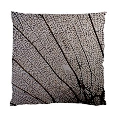 Sea Fan Coral Intricate Patterns Standard Cushion Case (two Sides)