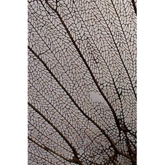 Sea Fan Coral Intricate Patterns 5 5  X 8 5  Notebooks