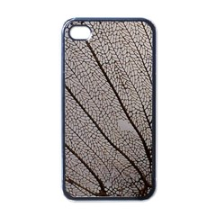 Sea Fan Coral Intricate Patterns Apple iPhone 4 Case (Black)