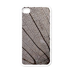 Sea Fan Coral Intricate Patterns Apple Iphone 4 Case (white)