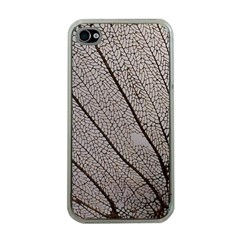 Sea Fan Coral Intricate Patterns Apple Iphone 4 Case (clear)