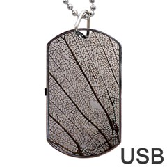 Sea Fan Coral Intricate Patterns Dog Tag Usb Flash (one Side)