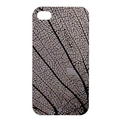 Sea Fan Coral Intricate Patterns Apple Iphone 4/4s Premium Hardshell Case