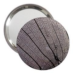 Sea Fan Coral Intricate Patterns 3  Handbag Mirrors