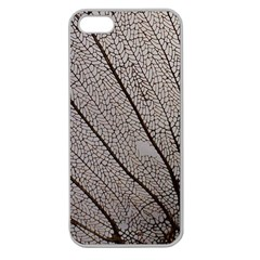 Sea Fan Coral Intricate Patterns Apple Seamless Iphone 5 Case (clear)