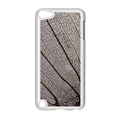 Sea Fan Coral Intricate Patterns Apple Ipod Touch 5 Case (white)