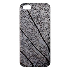 Sea Fan Coral Intricate Patterns Apple Iphone 5 Premium Hardshell Case