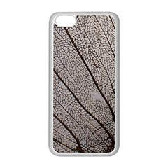 Sea Fan Coral Intricate Patterns Apple Iphone 5c Seamless Case (white)