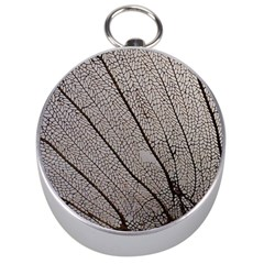Sea Fan Coral Intricate Patterns Silver Compasses