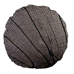 Sea Fan Coral Intricate Patterns Large 18  Premium Flano Round Cushions