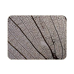 Sea Fan Coral Intricate Patterns Double Sided Flano Blanket (mini)