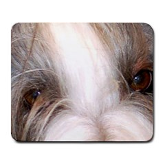 Bearded Collie Eyes Large Mousepads