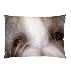 Bearded Collie Eyes Pillow Case