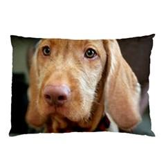 Vizsla second Pillow Case (Two Sides)