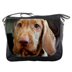 Vizsla second Messenger Bags