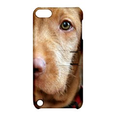 Vizsla second Apple iPod Touch 5 Hardshell Case with Stand